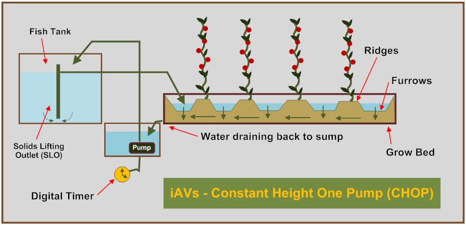 iAVs - Constant Height One Pump (CHOP)